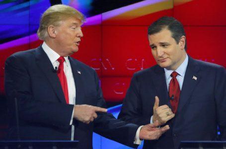 Chi è Ted Cruz, <br>lo sculaccia Trump <br>che piace nello Iowa