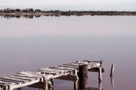 Camargue paese di mare di terra e di cielo