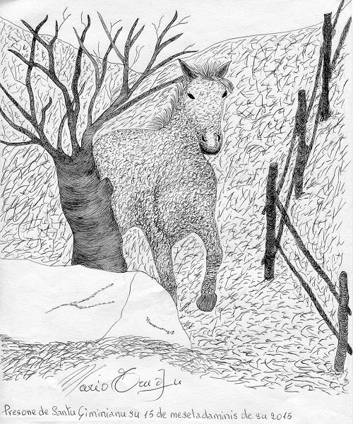 trudu cavallo cop