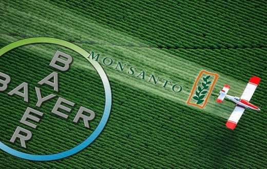 bayer-monsanto-cop