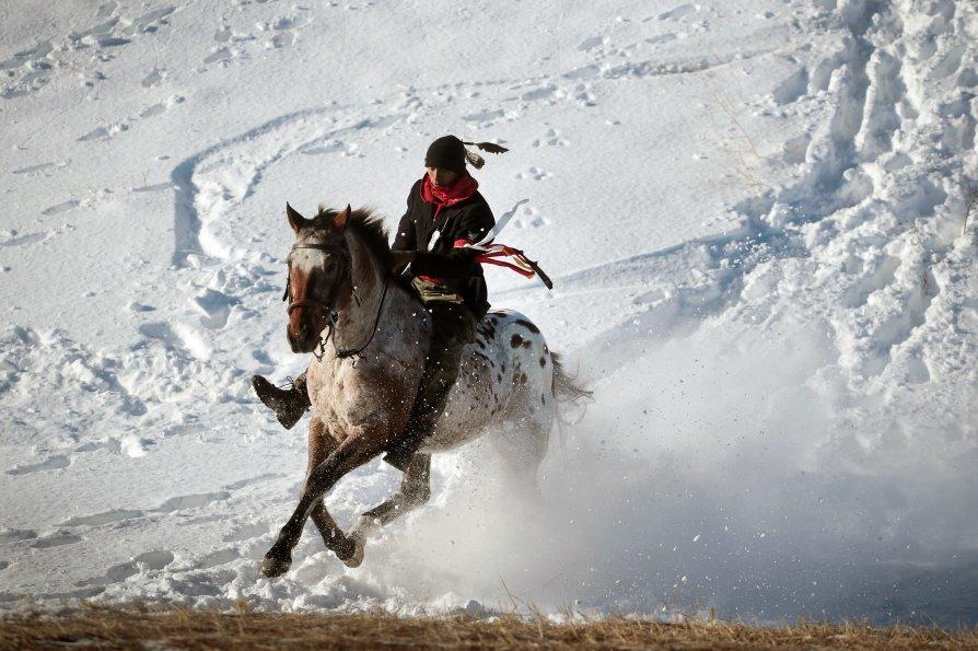 siux-cavallo