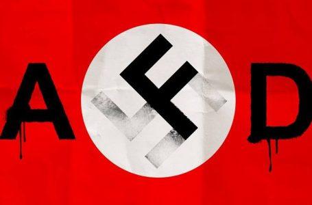 Rigurgiti di nazismo in Germania tutti i disagi sociali dietro l'AfD