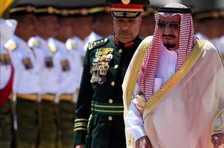 Arabia Saudita del campare gratis, arriva l'Iva ed è mezza rivolta