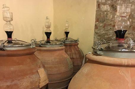 Banditone e Troccolone: storie di vini e di luoghi