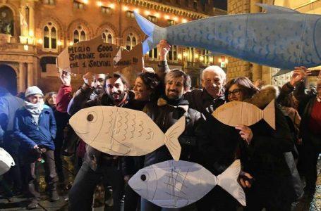Viva le sardine, e viva gli attivisti che cambiano il mondo