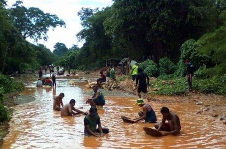 Venezuela e la guerra dell'oro: massacro d'indigeni in Amazzonia