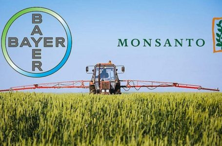 Bayer: 10 miliardi di dollari per i tumori da diserbanti Monsanto