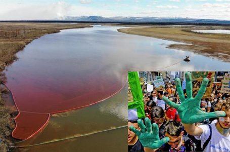 Giornata dell'ambiente, giovani per il loro futuro. Disastro ecologico in Siberia