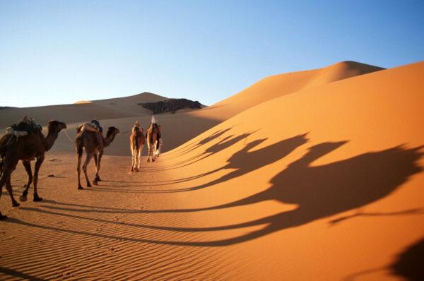 Sahara, confine sud dell'Europa e i dittatori utili: Marco Minniti e Alberto Negri