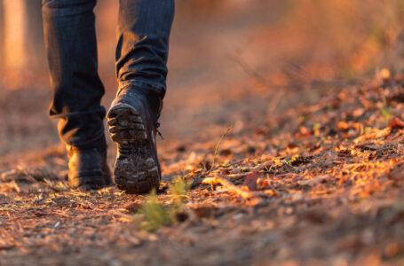 L'azione di camminare, sovversiva e dolce