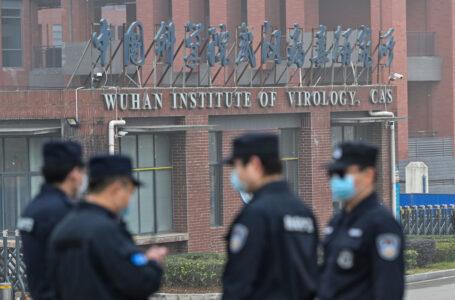 Torna la caccia Usa alle origini cinesi del virus. I morti Covid nascosti: da 600mila a 4 milioni in India